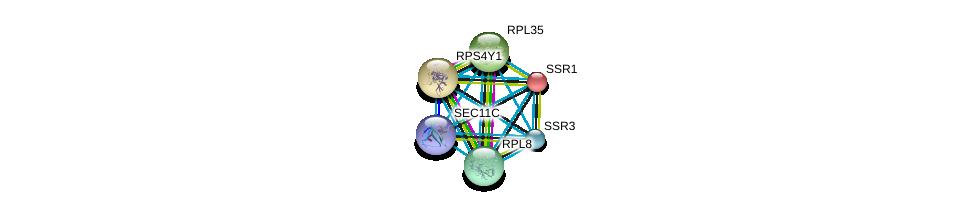 http://string-db.org/version_10/api/image/networkList?limit=0&targetmode=proteins&caller_identity=gene_cards&network_flavor=evidence&identifiers=9606.ENSP00000468633%0d%0a9606.ENSP00000244763%0d%0a9606.ENSP00000250784%0d%0a9606.ENSP00000259469%0d%0a9606.ENSP00000262584%0d%0a9606.ENSP00000265044%0d%0a