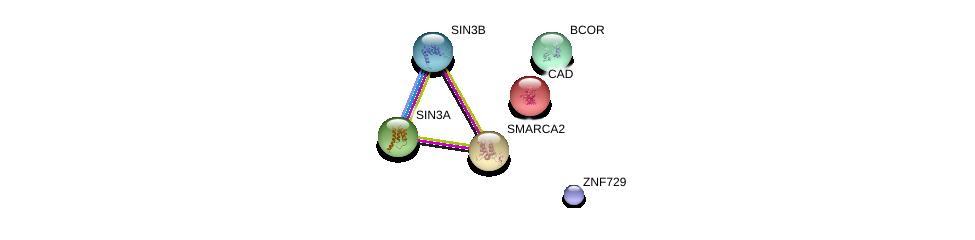 http://string-db.org/version_10/api/image/networkList?limit=0&targetmode=proteins&caller_identity=gene_cards&network_flavor=evidence&identifiers=9606.ENSP00000469582%0d%0a9606.ENSP00000353622%0d%0a9606.ENSP00000369131%0d%0a9606.ENSP00000367705%0d%0a9606.ENSP00000264705%0d%0a9606.ENSP00000265773%0d%0a