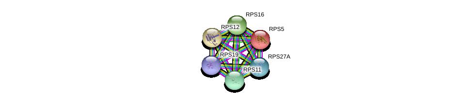 http://string-db.org/version_10/api/image/networkList?limit=0&targetmode=proteins&caller_identity=gene_cards&network_flavor=evidence&identifiers=9606.ENSP00000470004%0d%0a9606.ENSP00000196551%0d%0a9606.ENSP00000230050%0d%0a9606.ENSP00000251453%0d%0a9606.ENSP00000270625%0d%0a9606.ENSP00000272317%0d%0a