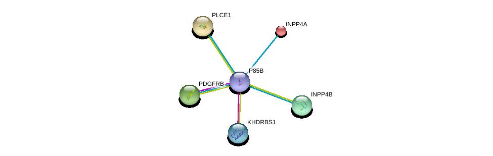 http://string-db.org/version_10/api/image/networkList?limit=0&targetmode=proteins&caller_identity=gene_cards&network_flavor=evidence&identifiers=9606.ENSP00000471914%0d%0a9606.ENSP00000261799%0d%0a9606.ENSP00000313829%0d%0a9606.ENSP00000262992%0d%0a9606.ENSP00000260766%0d%0a9606.ENSP00000074304%0d%0a