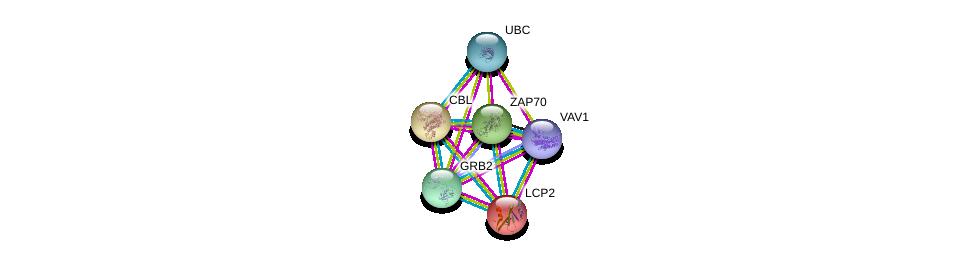http://string-db.org/version_10/api/image/networkList?limit=0&targetmode=proteins&caller_identity=gene_cards&network_flavor=evidence&identifiers=9606.ENSP00000472929%0d%0a9606.ENSP00000264033%0d%0a9606.ENSP00000339007%0d%0a9606.ENSP00000046794%0d%0a9606.ENSP00000344818%0d%0a9606.ENSP00000264972%0d%0a