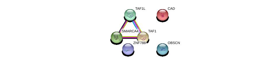 http://string-db.org/version_10/api/image/networkList?limit=0&targetmode=proteins&caller_identity=gene_cards&network_flavor=evidence&identifiers=9606.ENSP00000473243%0d%0a9606.ENSP00000264705%0d%0a9606.ENSP00000455507%0d%0a9606.ENSP00000418379%0d%0a9606.ENSP00000276072%0d%0a9606.ENSP00000350720%0d%0a
